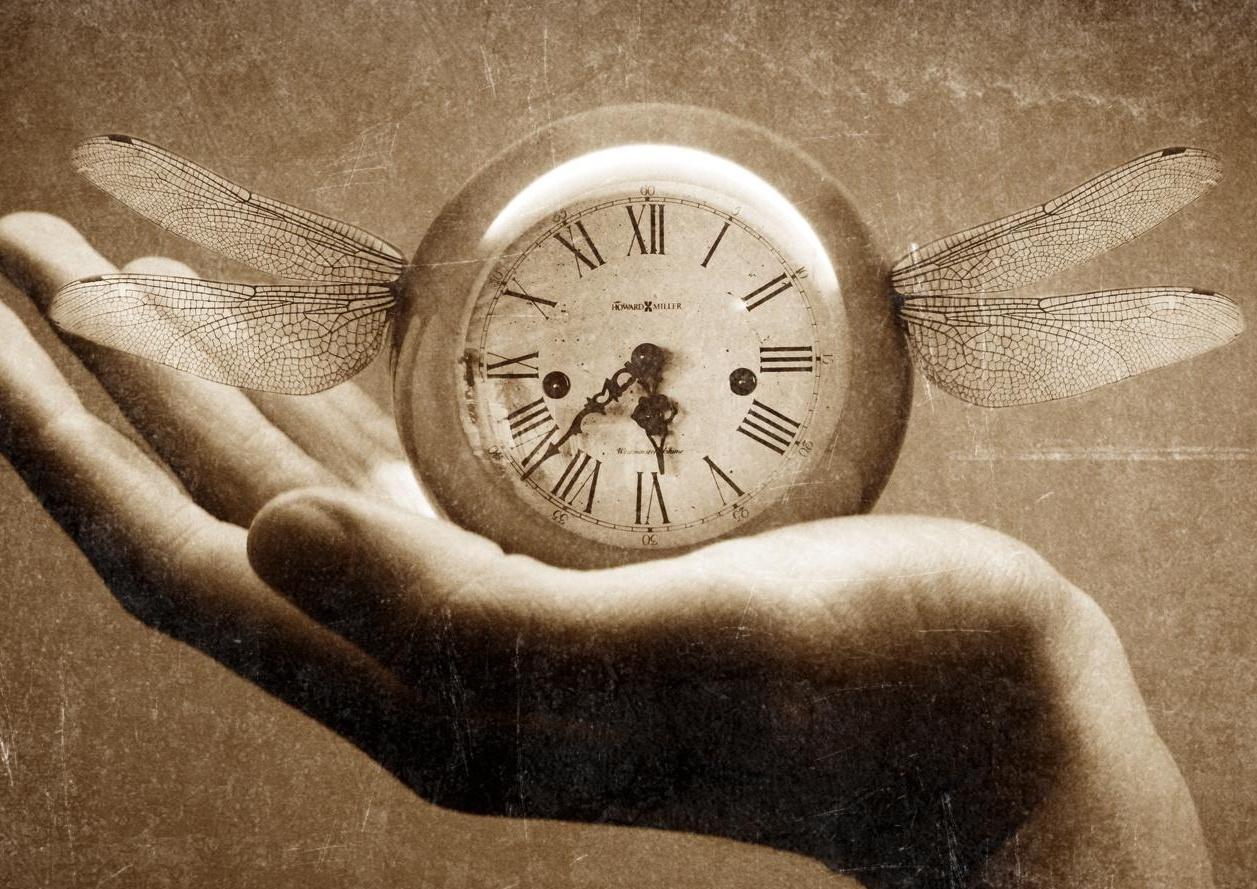 после полная потеря памяти сколько длится времени защитит будущего